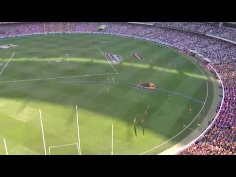 2014 AFL Grand Final - Hawthorn v Sydney Coaches Footage