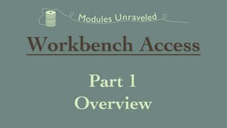 Workbench Access Part 1 - Overview