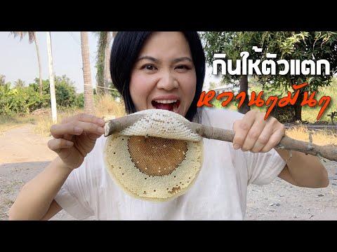 กินรังผึ้งหวานฉ่ำหัวน้ำเต็มๆตัวอ่อนมันมาก ของอร่อยจากธรรมชาติ - วันที่ 29 Jan 2019