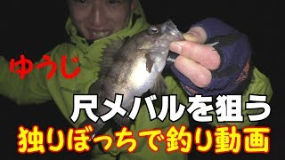 こんにちはアダチャレです。 今回は、初の一人での釣り動画です、 しょー...