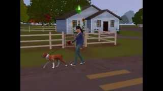 the sims 3 zwierzaki - spacer z psem ( na smyczy )