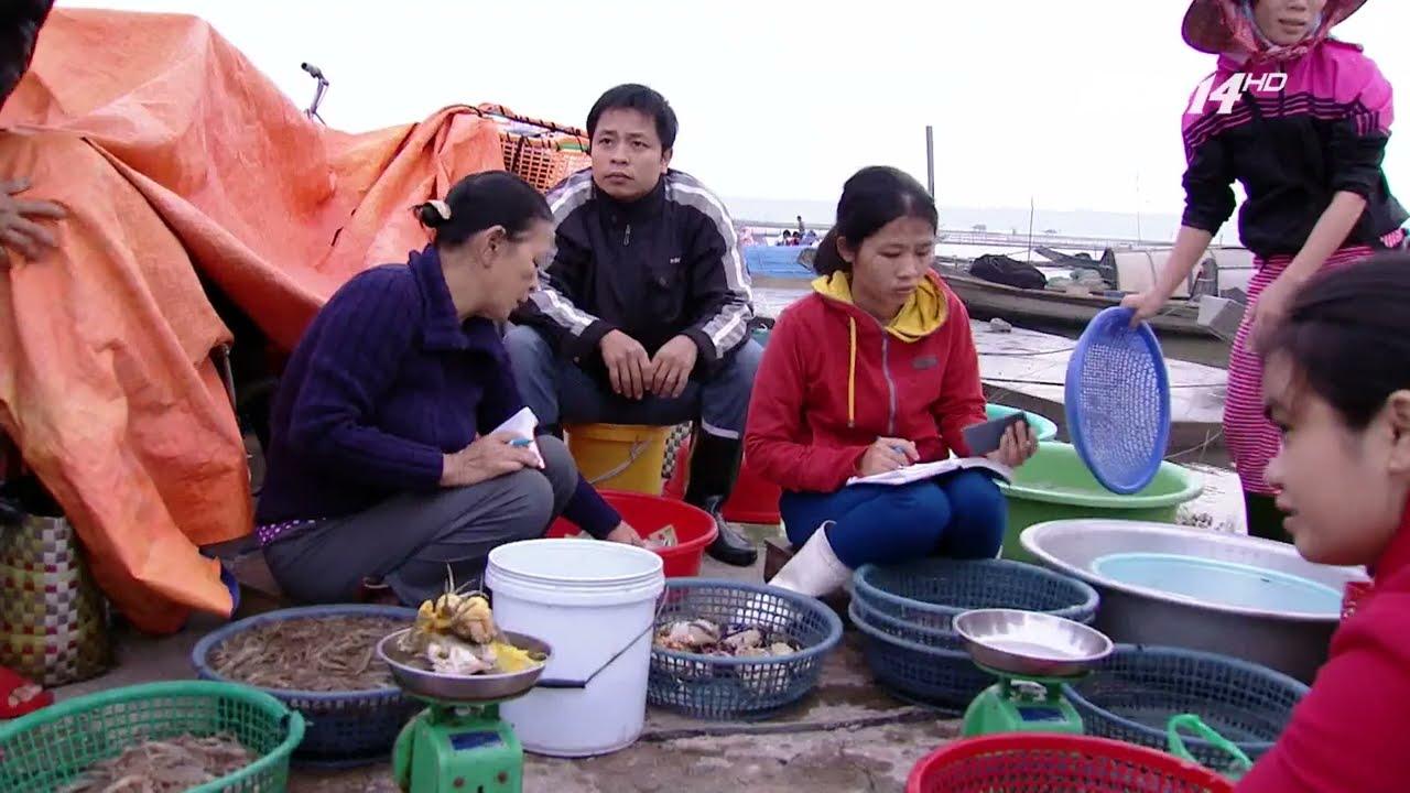 VTC14 | Mưu sinh mùa mưa trên phá Tam Giang