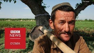 Каримов қулга айлантирган халқни Мирзиёев қандай озод қиляпти? - BBC Uzbek