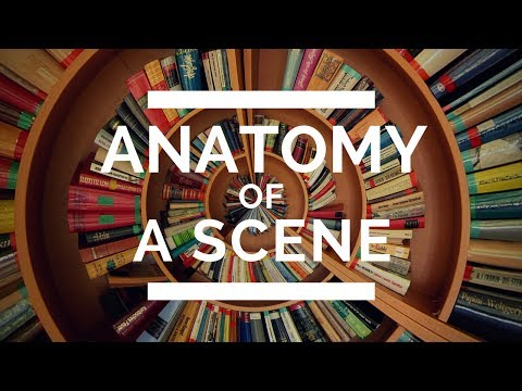 Anatomy of a Scene
