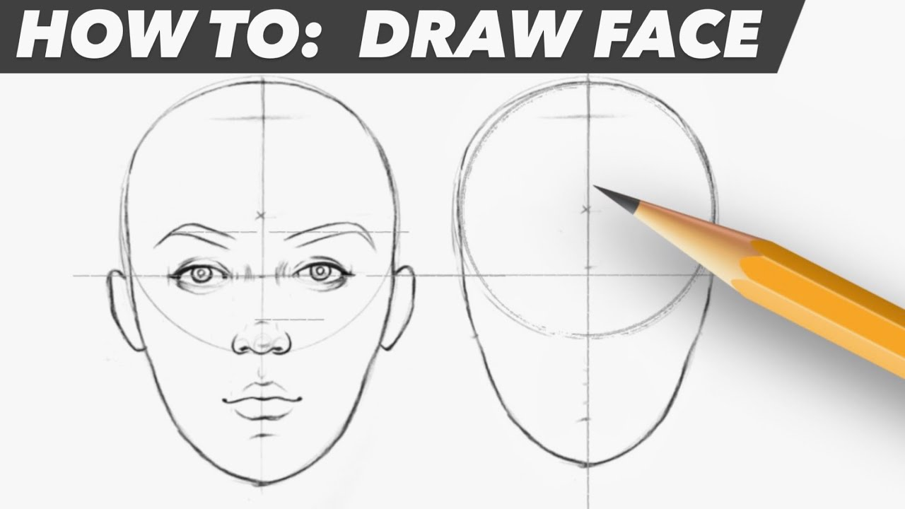 HOW TO DRAW FACE   Basic Proportion   YouTube