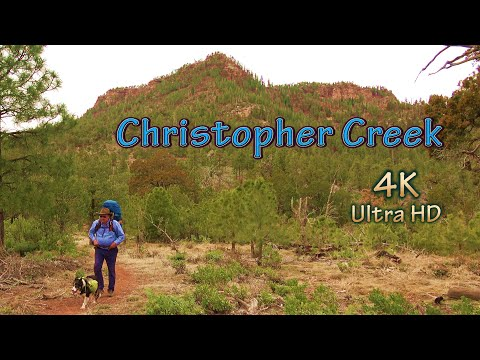 Arizona Fishing Spots With Brown Trout/Christopher Creek Hike And Camp With My Backcountry Dog
