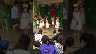 Các bé lớp mầm múa heo con xinh tròn tại trường mầm non thỏ ngọc đăknông