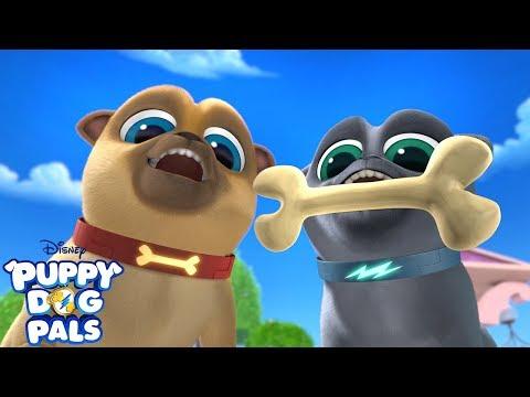 Bury It! | Music Video | Puppy Dog Pals | Disney Junior