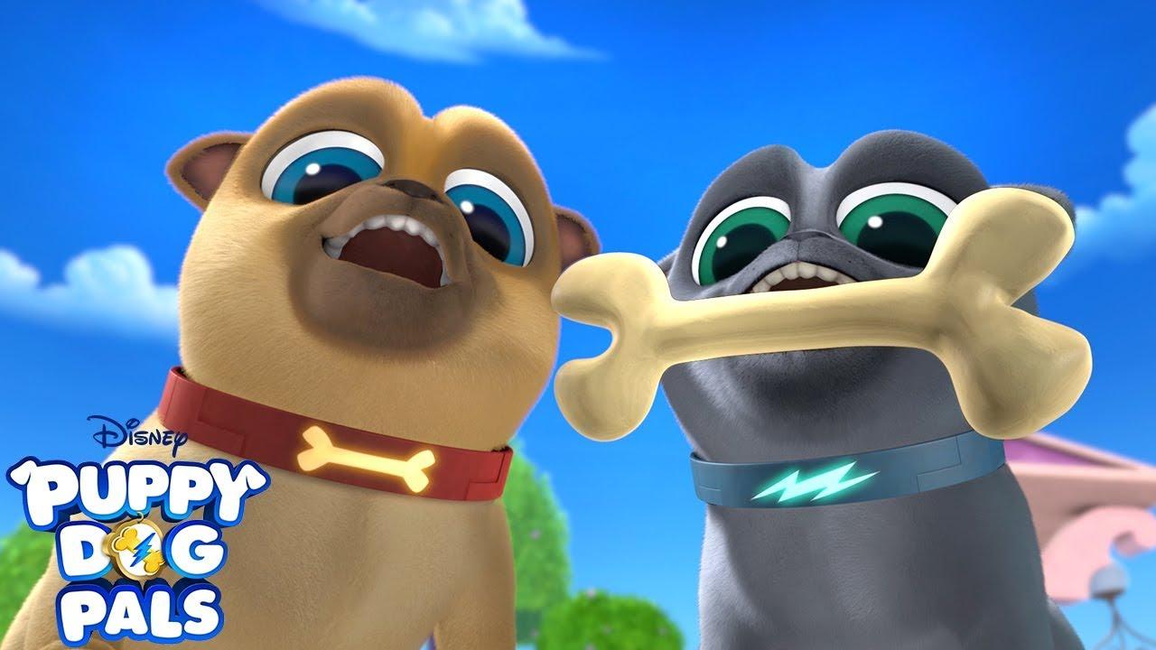 Bury It Music Video Puppy Dog Pals Disney Junior Youtube