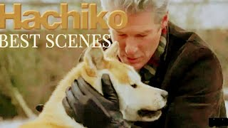 האצ'יקו (2009) Hachi: A Dog's Tale