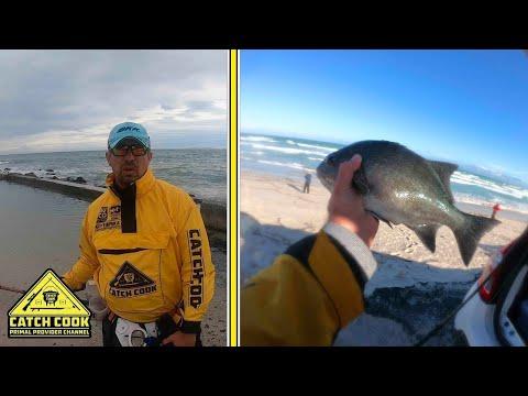 Galjoen [CATCH COOK] False Bay, Western Cape, South Africa