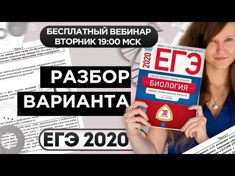 РАЗБОР ВАРИАНТА ЕГЭ ПО БИОЛОГИИ 2020
