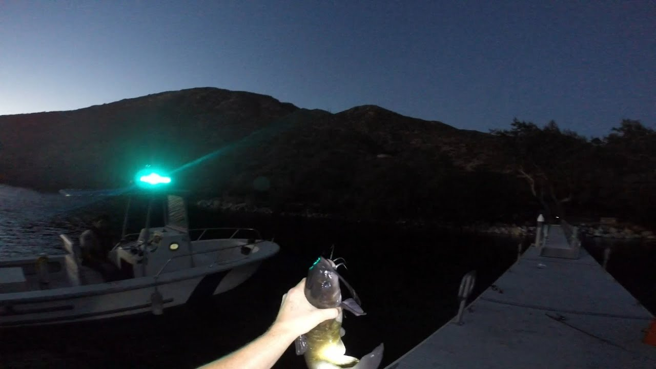 Fishing silverwood lake catfish serrano beach for Silverwood lake fishing report