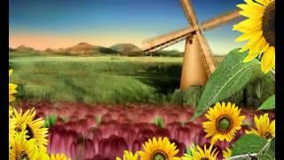 Видеосопровождение мельница с подсолнухами(футажи, видео для монтажа и визуальное сопровождение различных мероприятий., 2017-02-28T07:36:31.000Z)