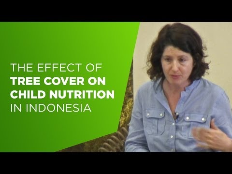Amy Ickowitz on the effect of tree cover on child nutrition in Indonesia