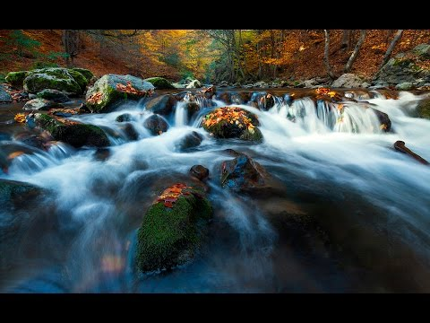 My autumn photos from 2015 - ideas and tips - Part 1