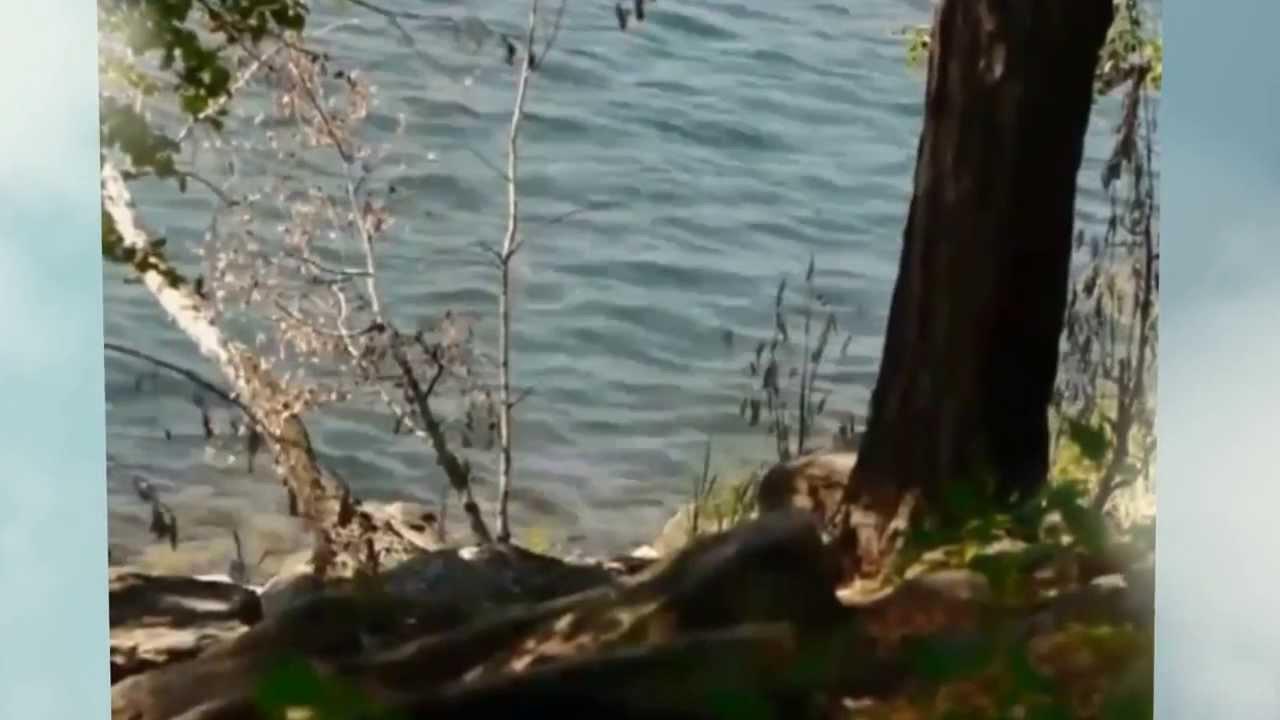 Отдых !!! Яровое город курорт Лечебно Озеро Яровое Аквапарк Лава .