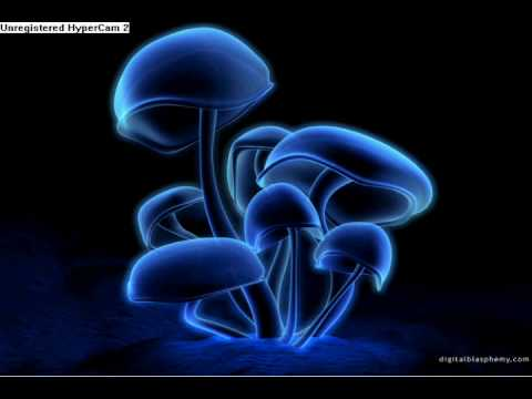 Infected mushroom Blink -(with lyrics!!!)