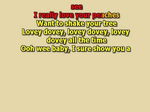 the joker steve miller band best karaoke instrumental lyrics