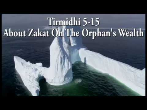 Tirmidhi 5-15: About Zakat On The Orphan's Wealth