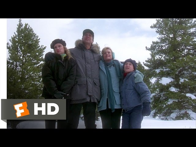 national lampoons christmas vacation trivia when the family treks to chop down a christmas tree why cant audrey see the tree project trivia - National Lampoons Christmas Vacation 2