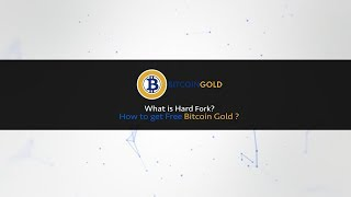 Bitcoin Hard Fork explained to a Child | What is Bitcoin Gold | How to Export private Keys in Hindi