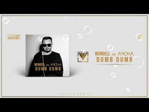 Wendell feat. Andia - Dumb Dumb (Vally V. Remix)