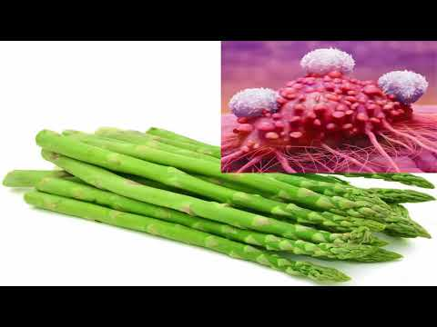 Cutting out asparagus from your diet stop the spread of cancer
