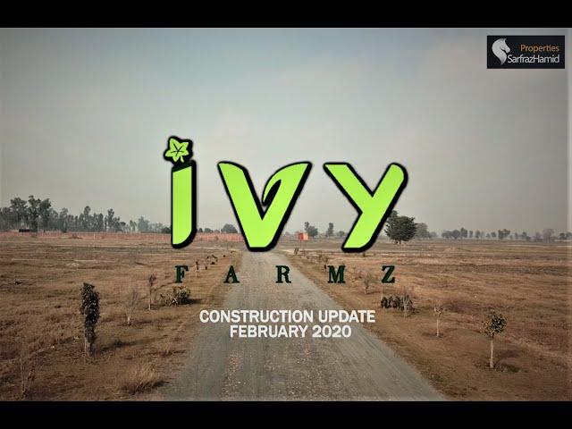 Ivy Farmz | Construction Updates 12 February 2020.