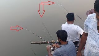 Best Fish Hunting | Live Fish Hunting In village | part-105