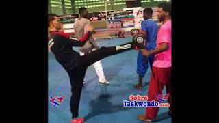 Taekwondo.  Tendencias del entrenamiento técnico táctico moderno