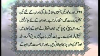 Surah Al-Baqarah v.212-249 with Urdu translation, Tilawat Holy Quran, Islam Ahmadiyya