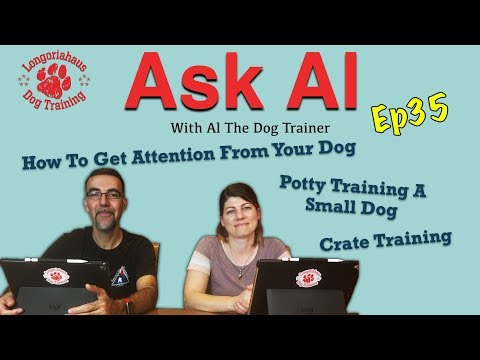 Episode #35 of Ask Al 4/17/19- Getting Your Dogs Attention, Potty Training, Crate Training and More!