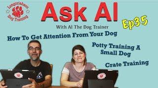 Episode #35 of Ask Al 4/17/19 thumbnail