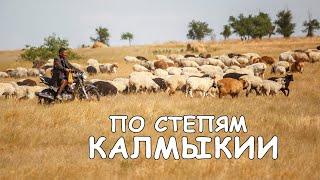 Уезжаем в Чечню. Степи Калмыкии. Ищем Яшкульский заповедник. Республика Калмыкия