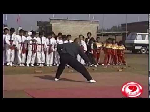 The Indestructible Liang Ke Quan performing Cheng style Ba Gua Zhang