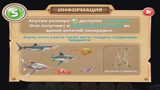 Hungry Shark World - Докачиваю ЧЕРНОПЕРУЮ РИФОВУЮ АКУЛУ До 10 уровня