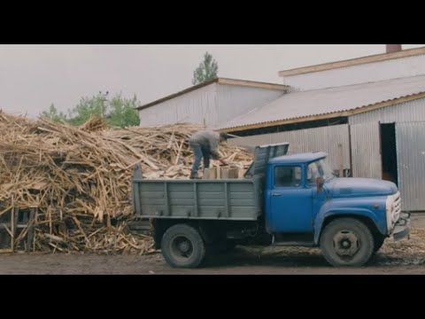 Download Case Study: Supporting a Sawmill Business in Druzhkivka, Donetsk region