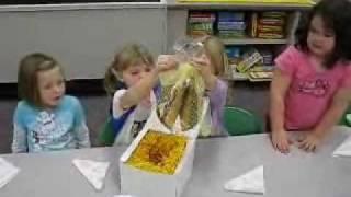 GIANT Fancy Fortune Cookie - Girl Scouts Taste Test