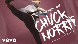 Troy Ave - Chuck Norris (Hoes & Gangstas) (Audio)