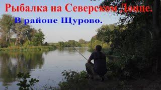 Рыбалка на Северском Донце.В районе Щурово.