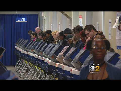 Mick Lee - Cook County Early Voting sets Record High