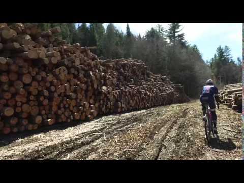 New Hampshire: Logs