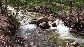 St Marys Wilderness