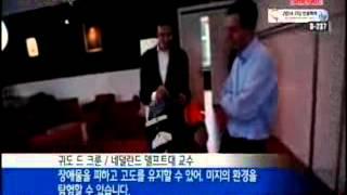 장애물도 척척...초소형 잠자리 로봇 / YTN 사이언스