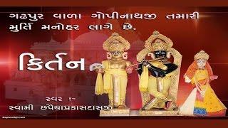 Gadhpur Vale Gopinathaji ગઢપુરવાળા ગોપિનાથજી...     Swaminarayan Kirtan Chapiya swami
