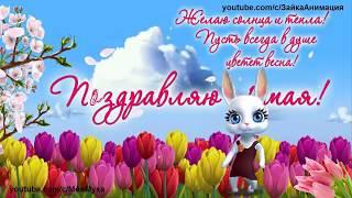 ZOOBE зайка Самое Замечательное Поздравление с 1 МАЯ МИР,ТРУД,МАЙ
