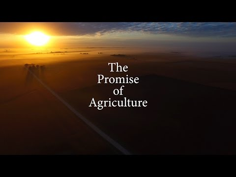 Promise of Agriculture (v. 2) View in full HD on full screen