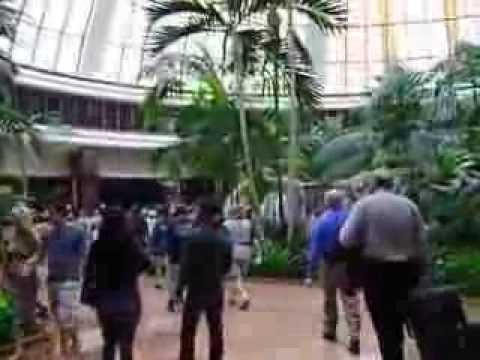 The Mirage Tropical Rainforest Lobby