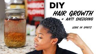 Baixar Aloe Vera, Fenugreek, & Hibiscus Leave In Spritz   Hair Growth, Anti Shedding + Moisture